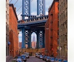 ***DUMBO*** BROOKLYN *** studio / home office 704 SQ FT