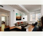 2 bed 2 bath, Dumbo, Brooklyn, 1,270 SQ FT LOFT